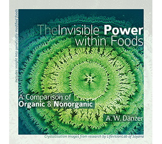 The Invisible Power within Foods